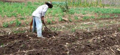 Colombia debe solucionar el tema agrario para lograr la paz