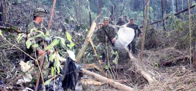 Muere en combate cabecilla del Frente 21 de las Farc