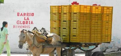 Vehículos de tracción animal deberán sustituirse antes del 31 de enero