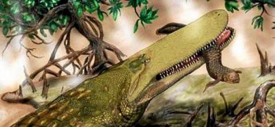Identifican una nueva especie de cocodrilo que vivió hace 95 millones de años