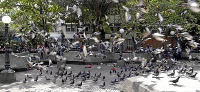 Demolición del Parque de La Constitución genera polémica en Barrancabermeja