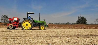 Precio externo del maíz superó los US$300