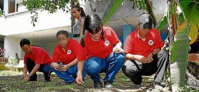 Fundación Niños con Futuro busca apoyo