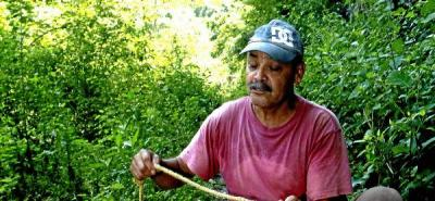 Los cazadores del oro que esconde Bocas