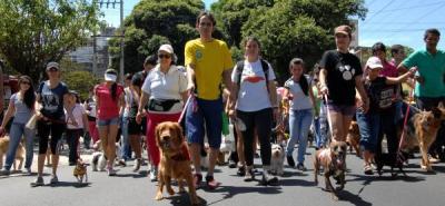 Bucaramanga se unirá a la marcha nacional por la defensa de los animales
