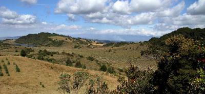 Colombia es el primer país en presentar una lista roja de ecosistemas