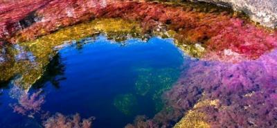 Polémica por licencia para exploración petrolera en Caño Cristales