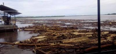 Una corriente de material flotante de unos siete kilómetros de largo y 10 metros de ancho aproximadamente, en su mayoría madera, circula por el río Magdalena.
