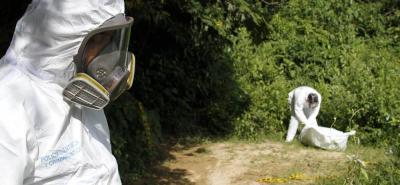 Mujer hallada en zona boscosa de Piedecuesta habría sido asesinada