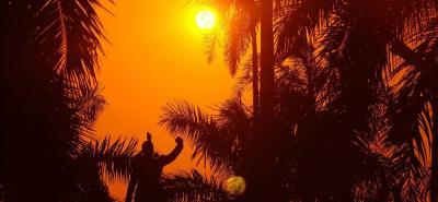 Este año sería menos caluroso que 2016