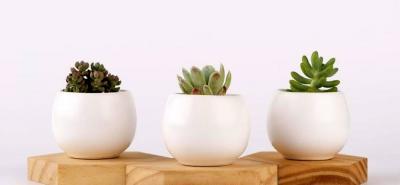 ¡Larga vida para estas 5 tendencias de decoración de interiores!