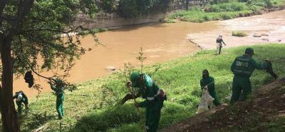 La recolección de inservibles y desechos se desarrolló el pasado sábado por personal de la Secretaría de Ambiente, y contó con el apoyo de una retroexcavadora del Municipio.
