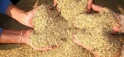 ¿Se comercializa 'arroz plástico' proveniente de China en Colombia?