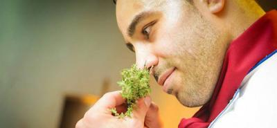 Un estudio reveló que oler la comida también engorda