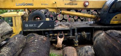 Buscan que daños al ambiente tengan multas hasta por 5 mil salarios mínimos