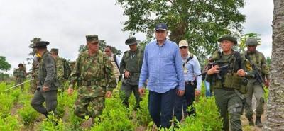 Nariño, Norte de Santander, Putumayo y Cauca se verían afectados por este flajelo.