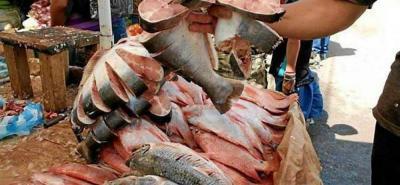 El muelle y el Paseo del Río dicen los pescadores que son las zonas en las que se vende el pescado que llega de afuera.