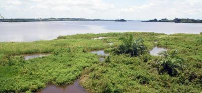 La Procuraduría General ya había llamado la atención de las autoridades regionales sobre los posibles hechos de contaminación que se estarían registrando en la Ciénaga de San Silvestre.