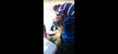 El día de ayer, se realizó una jornada de vacunación en la vereda Hoya de Monas.
