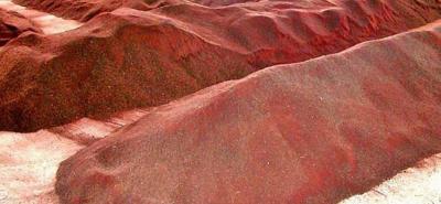 La harina de carne y de hueso tiene mercado abierto para Perú y Costa Rica. La harina de sangre llega por primera vez a un país de Centroamérica.