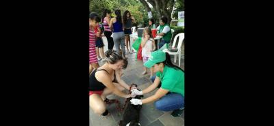 Las autoridades de salubridad han llevado a cabo las jornadas de vacunación para reducir el riesgo de enfermedades de las mascotas.