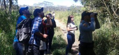 El avistamiento de aves también es una nueva tendencia de turismo ecológico en Colombia por su gran diversidad.