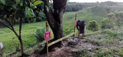 A nivel nacional, se han declarado más de 225 municipios libres de sospechas de minas antipersonal.