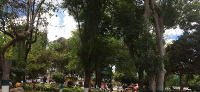 Una de las quejas de los veedores es el abandono de las zonas verdes del parque, las autoridades trabajan en la recuperación.