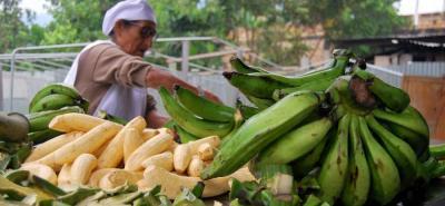 Los gremios del sector agropecuario en el país han manifestado de manera reiterada que el sector agropecuario carece de una política que lo rodee.