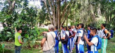 Como parte fundamental de este ejercicio, la Cdmb ha convocado a los Comité Interinstitucionales de Educación Ambiental (Cidea), Policía Ambiental y otras instituciones.