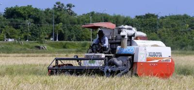 Al cierre de 2017, la cosecha arrocera del país fue del orden de 2'619.042 toneladas frente a 2'533.577 de 2016.