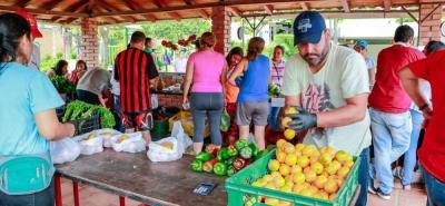 El Mercado Campesino busca beneficiar a los productores locales, para evitar intermediarios.