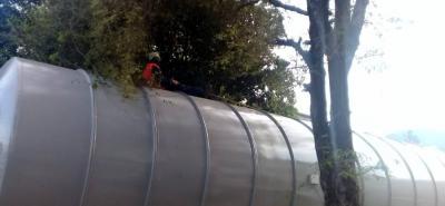 De acuerdo con la denuncia ciudadana, este vehículo en su paso por Villas de San Juan causó daños en los árboles.