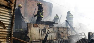 Las otras víctimas del incendio en el Norte de Bucaramanga, los animales