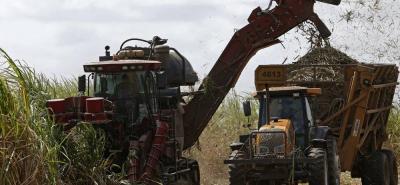 Colombia en 2013 produjo 2,12 millones de toneladas de azúcar; para cual se recolectaron 21,56 millones de toneladas de caña.