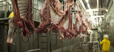 Las exportaciones de carne se contraerán, aproximadamente, 10% debido a los problemas de aftosa.