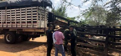 Para Fedegán, se debe encauzar de manera rápida la economía de los ganaderos, y proteger la salud de los colombianos.