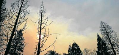 Desde el pasado jueves se registra un gran incendio en el norte de California y los bomberos siguen en sus labores tratando de sofocarlo.