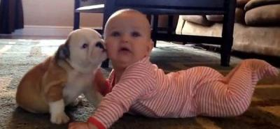 La emotiva muestra de cariño entre un cachorro y un bebé