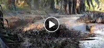 Reiteran denuncias sobre avance de la mancha de petróleo en el Río Sogamoso de Santander
