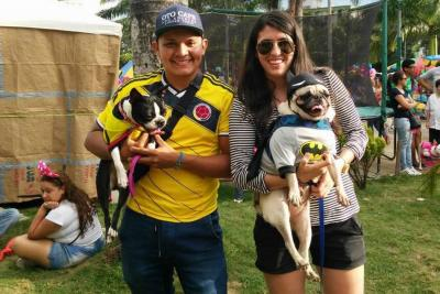 En Bucaramanga, las mascotas se disfrazaron  por una noble causa