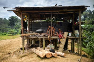 Hambre y miedo, el impacto de la violencia en las selvas de Colombia