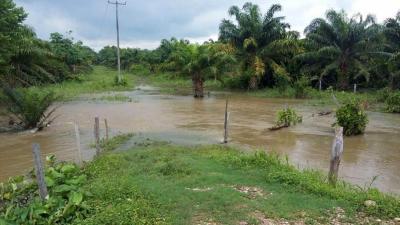 Tras superar su cota máxima, el río Magdalena inundó nueve veredas y cerca de 200 hectáreas durante la última semana.