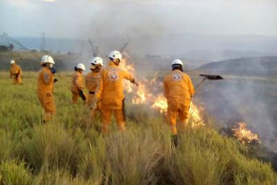 Incendio consumió 350 hectáreas de vegetación y cultivos en Los Santos