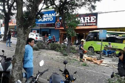 Bus de Metrolínea colisionó contra un árbol en Bucaramanga