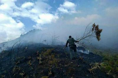 Se reactivó este viernes incendio que arrasó con cerca de 25 hectáreas en Santander