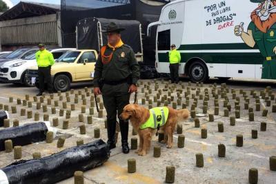 Incautan 220 kilos de marihuana en Bucaramanga