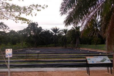 Filtros Verdes: un 'salvavidas' de los recursos hídricos en Santander