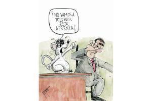 Las ratas en el Congreso