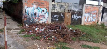 Los desperdicios de poda estarían ayudando al criadero de roedores en El Llanito.